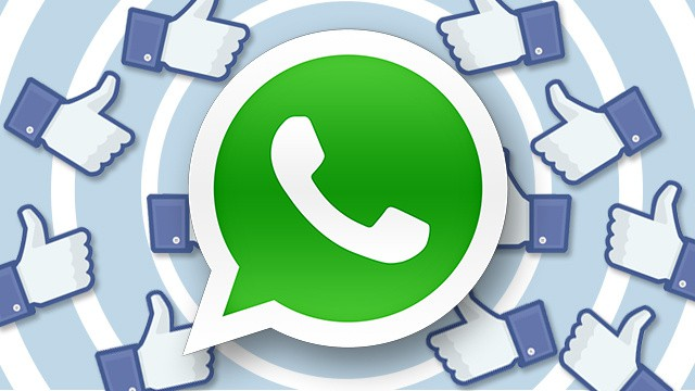 whatsapp hits over half a billion active monthly users