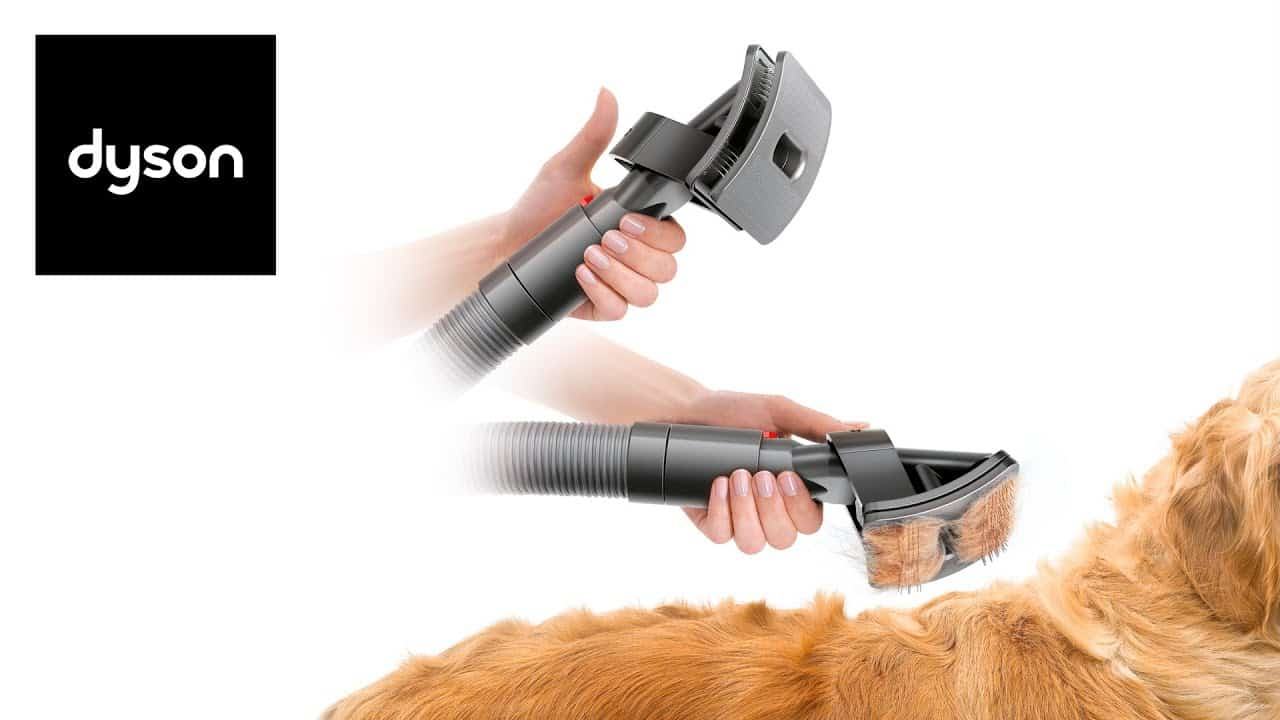 Gadgets To Keep Your Dogs Fit, Safe And Happy